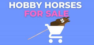 Read more about the article Best Hobby Horses for Sale 2021 – Top 10 List
